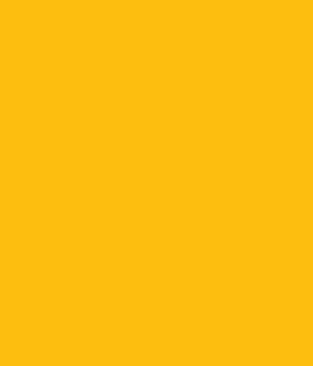 insurance-shape